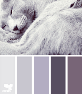 This Cat Reminds Me Of Miles And Anything That Reminds Me Of Him Is Worth Pinning I Also Like Those Grays Room Colors Bedroom Colors Design Seeds