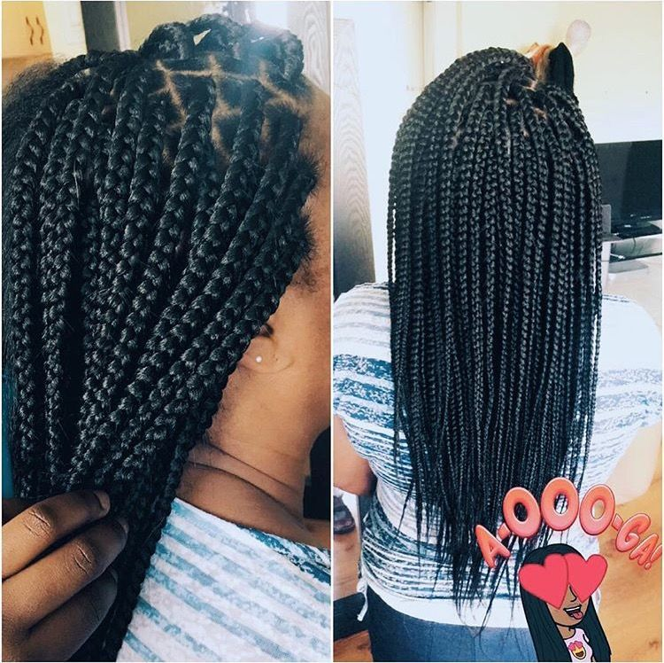 Medium Mid Back Box Braids B R A I D S Pinterest Box Braids