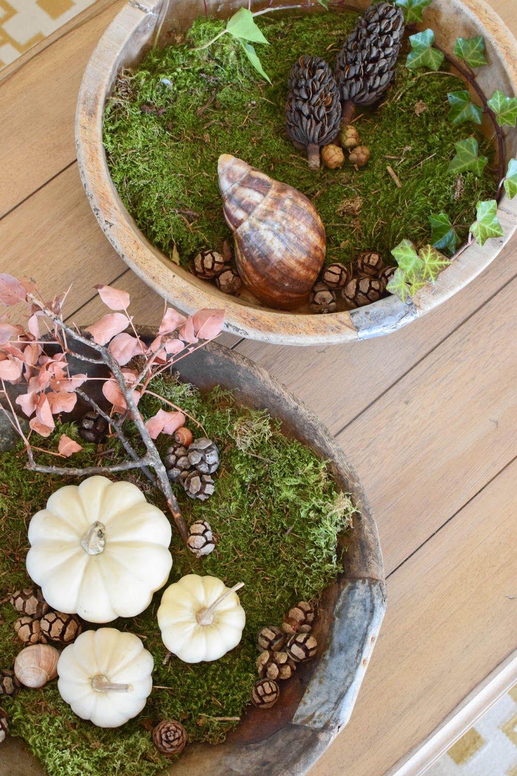 Wie ihr eine schale kreativ mit naturmaterialien dekoriert for Herbst dekoartikel