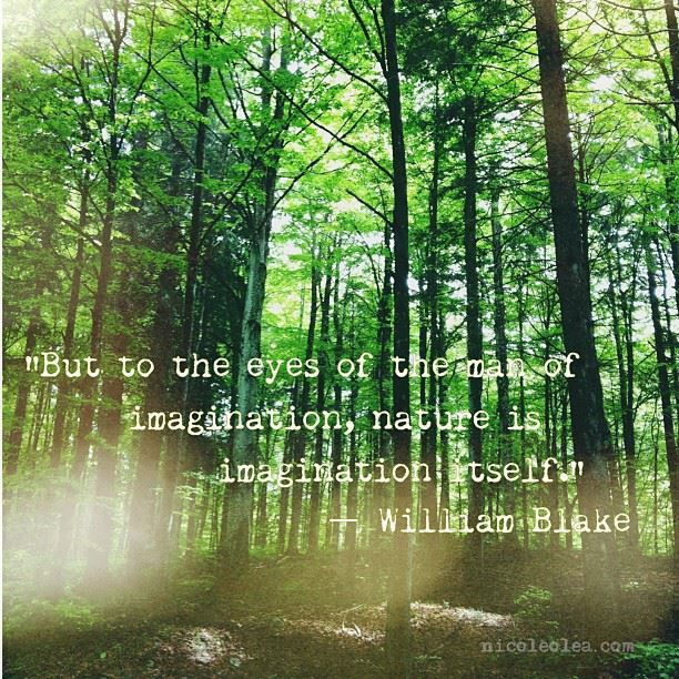 Shakespeare Quotes About Natures Beauty: Imagination... William Blake Quote