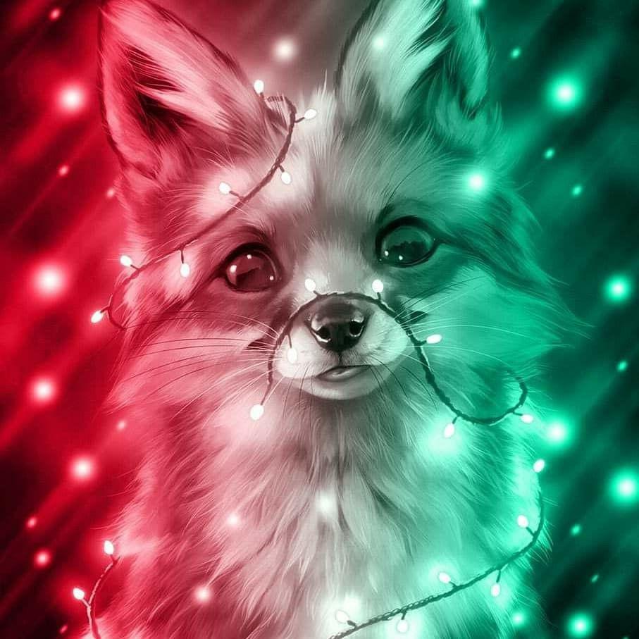 Cute Fox Cute Animal Drawings Cute Cartoon Animals Cute Pokemon Pictures