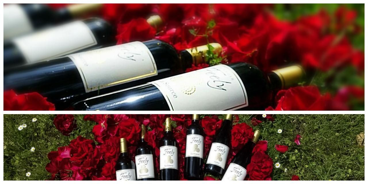 Order Organic Biodynamic Natural Wine To Ship Direct In The Eu Chateau Feely Organic Wine Tours Accommodation Organic Wine Natural Wine Wine