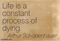 schopenhauer quotes - Google Search