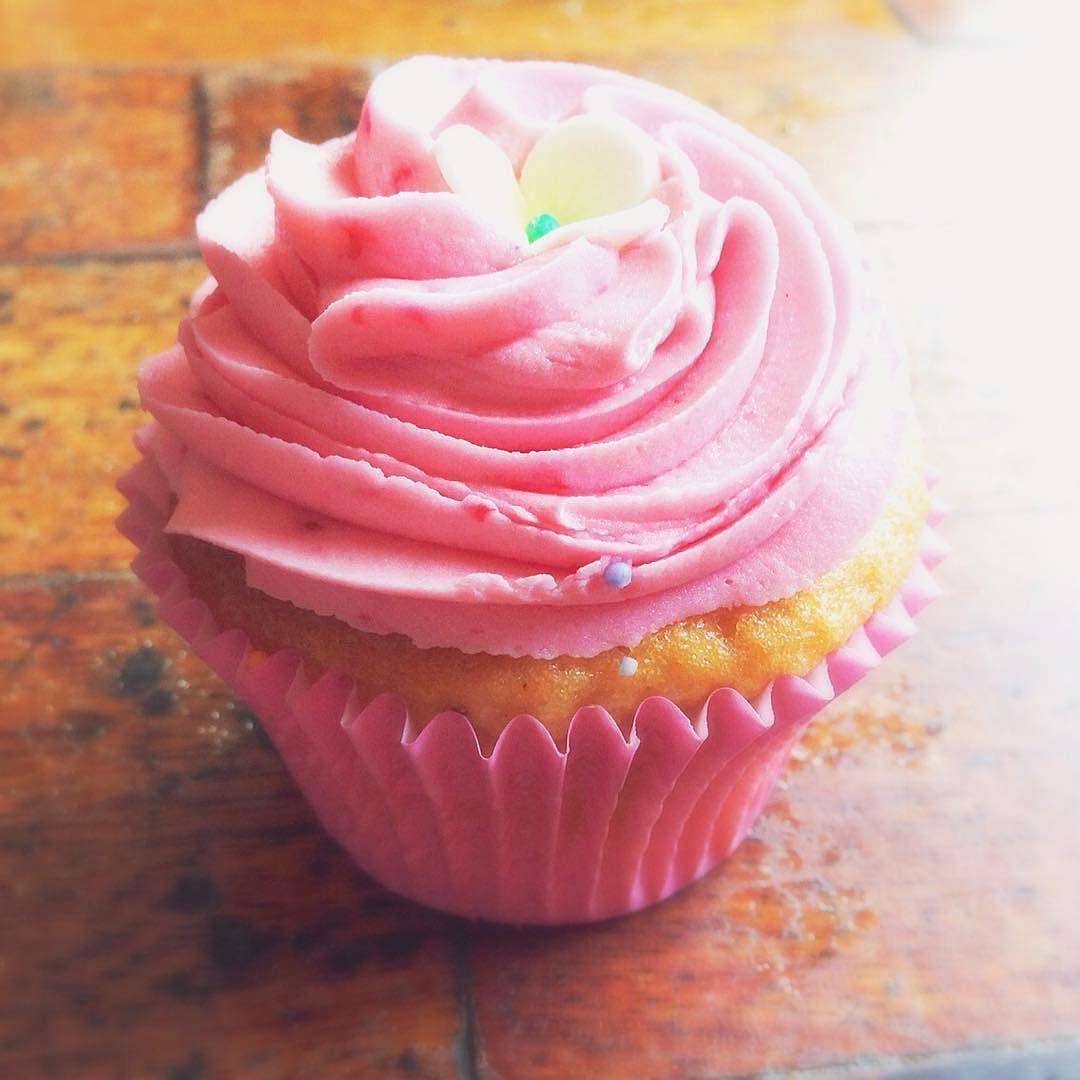 We All Love Cupcakes Pink Foodie Cupcakes Cute Pinkcupcakes
