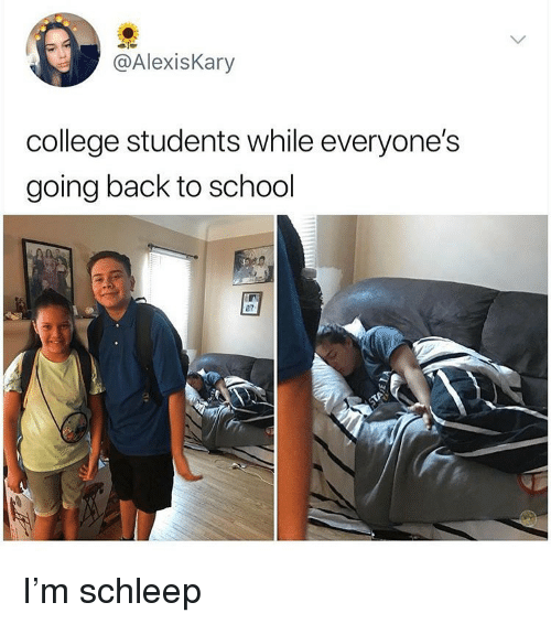 25 Memes That Only Students Will Understand College Collegehumor Memes Collegememes Funny College Memes College Memes College Life Humor