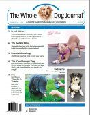 Cover Image -- excellent article for homemade Dog feeding