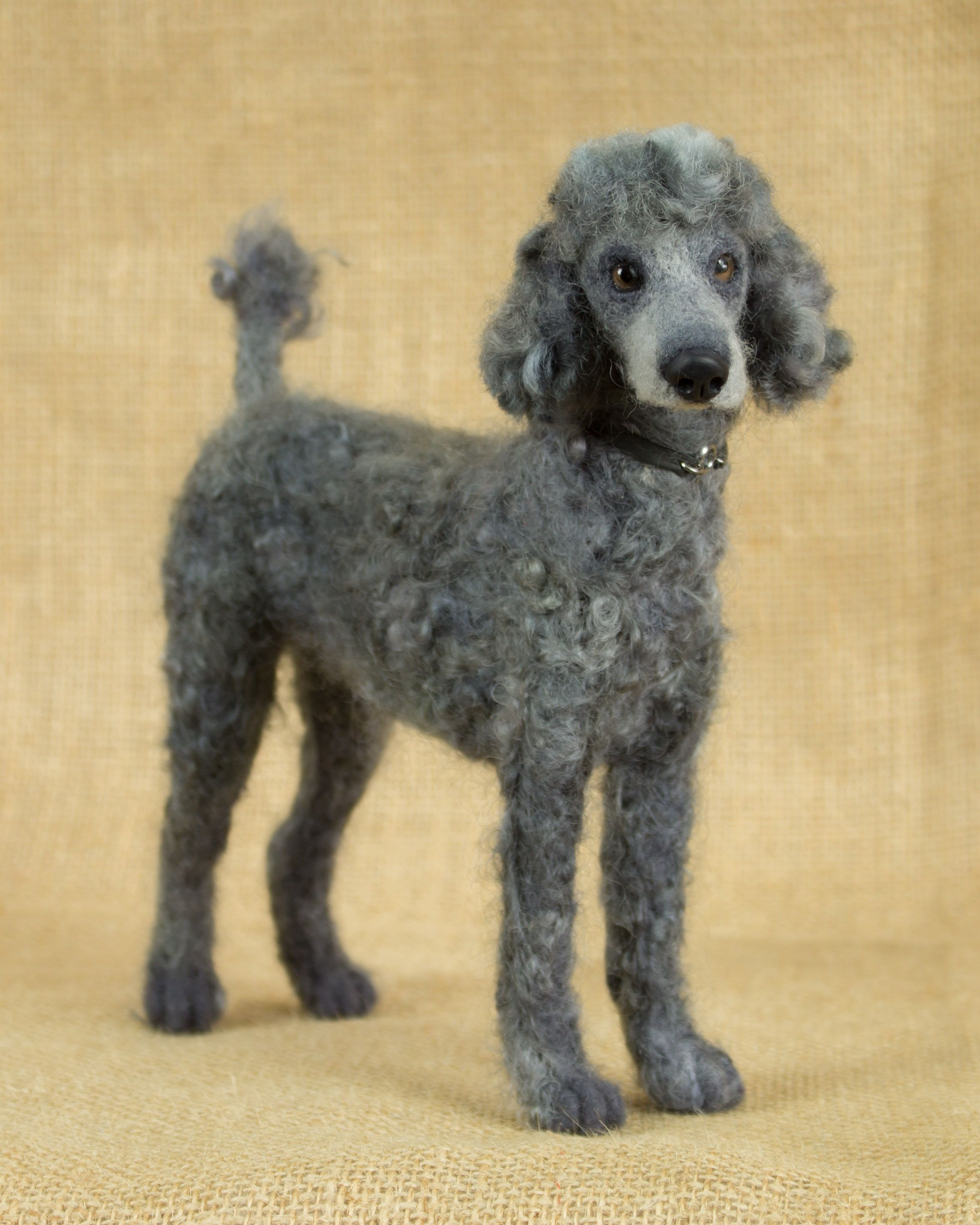 Stasiu The Poodle Needle Felted Animal Sculpture By Megan Nedds