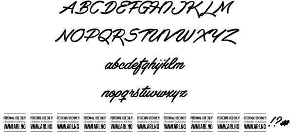 Haydon Brush font by Måns Grebäck  http://www.fontriver.com/font/haydon_brush/  #fonts #typography #script #brush #design #webdesign #font #typeface #ttf #lettering