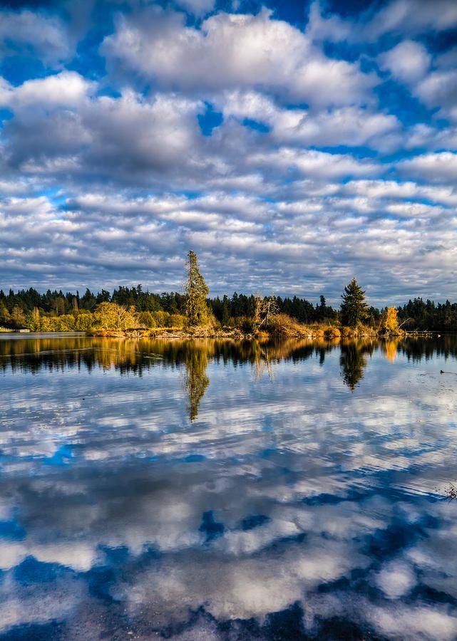 ✮ Reflections on Lake Ballinger