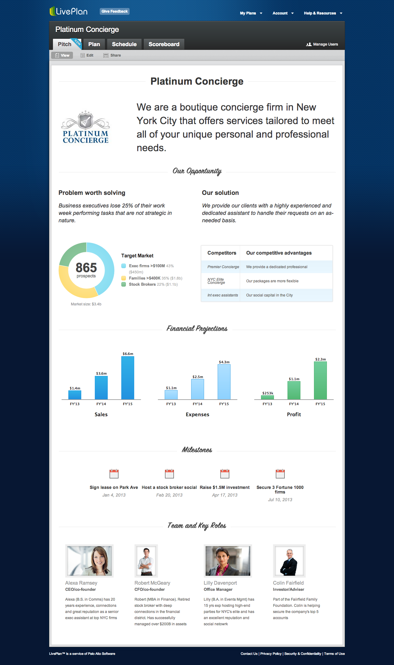 LivePlanSamplePitchPagepng NonStartup Business - Liveplan business plan template