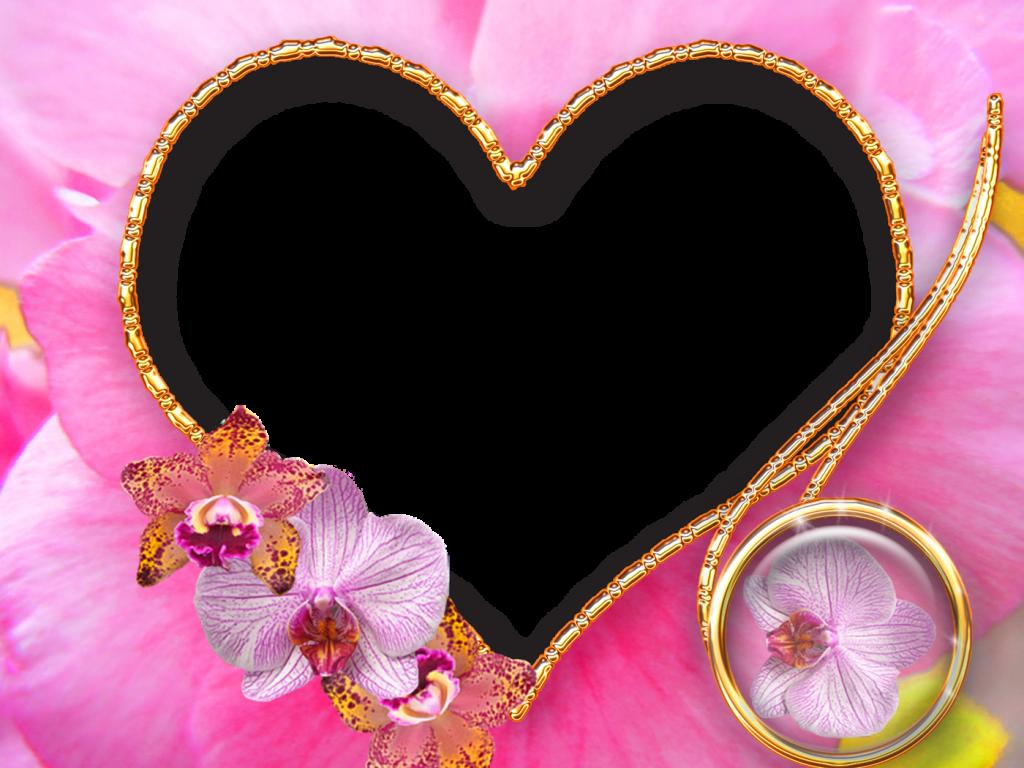 Love Frame Png Transparent Images 1293: Flowers Love Frame Template