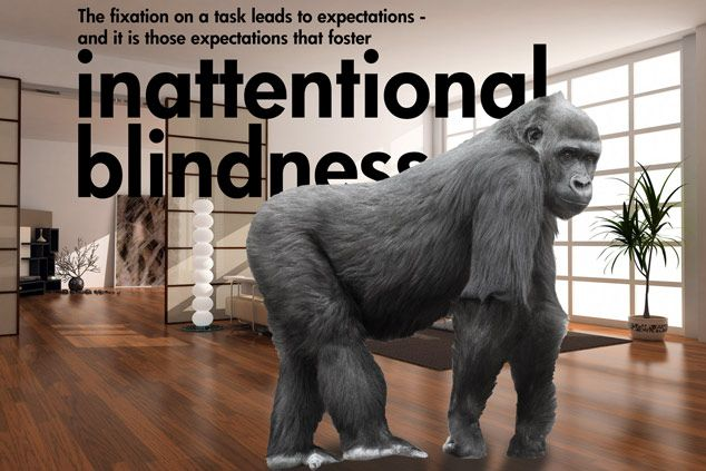 inattentional blindness - Google Search | Books | Pinterest | Search