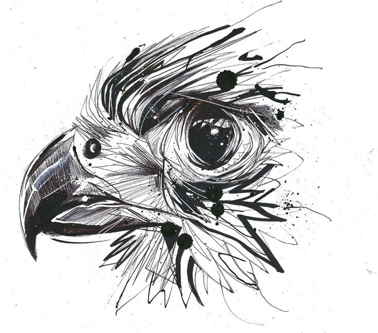 Resultado De Imagen Para Geometric Eagle Design Tatuaje De Halcon Animales Dibujados A Lapiz Tatuajes Aguilas