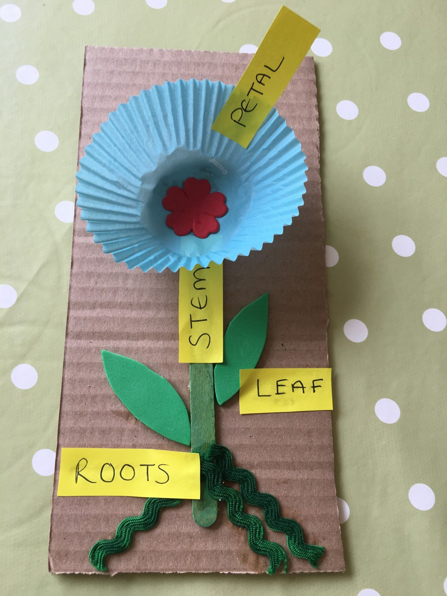 Easy Educational Flowers Bostik Bloggers Easy Flower Craft Educational Labelled