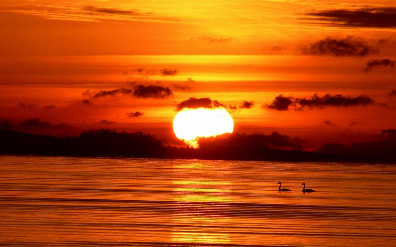 Sunset | QT'sFolder#4 ! | Sunset wallpaper, Sunset quotes