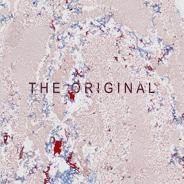 The Original, a song by Roo Panes on Spotify