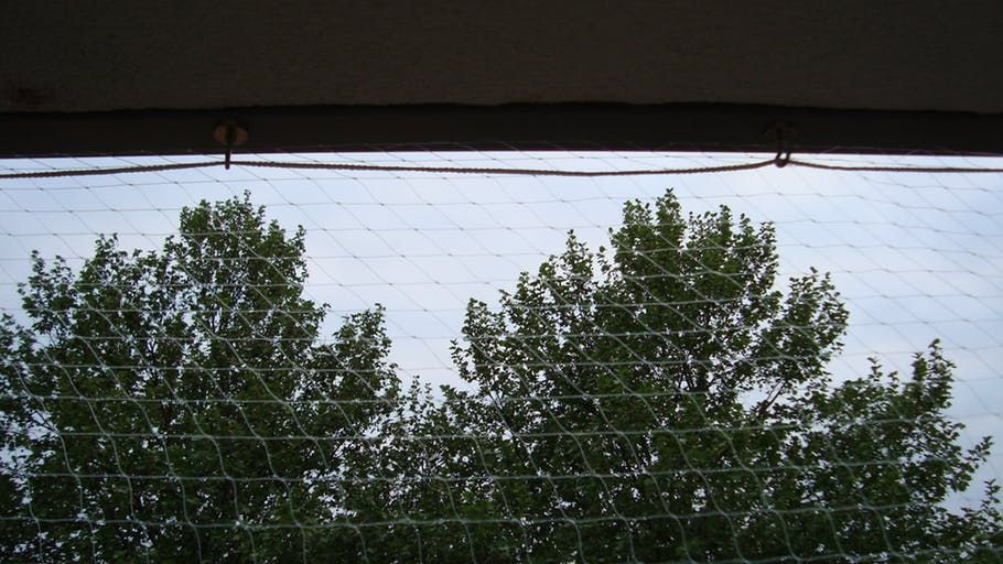 Katzennetz Ohne Bohren Am Balkon Befestigen Supermagnete Katzennetz Supermagnete Katze Balkon