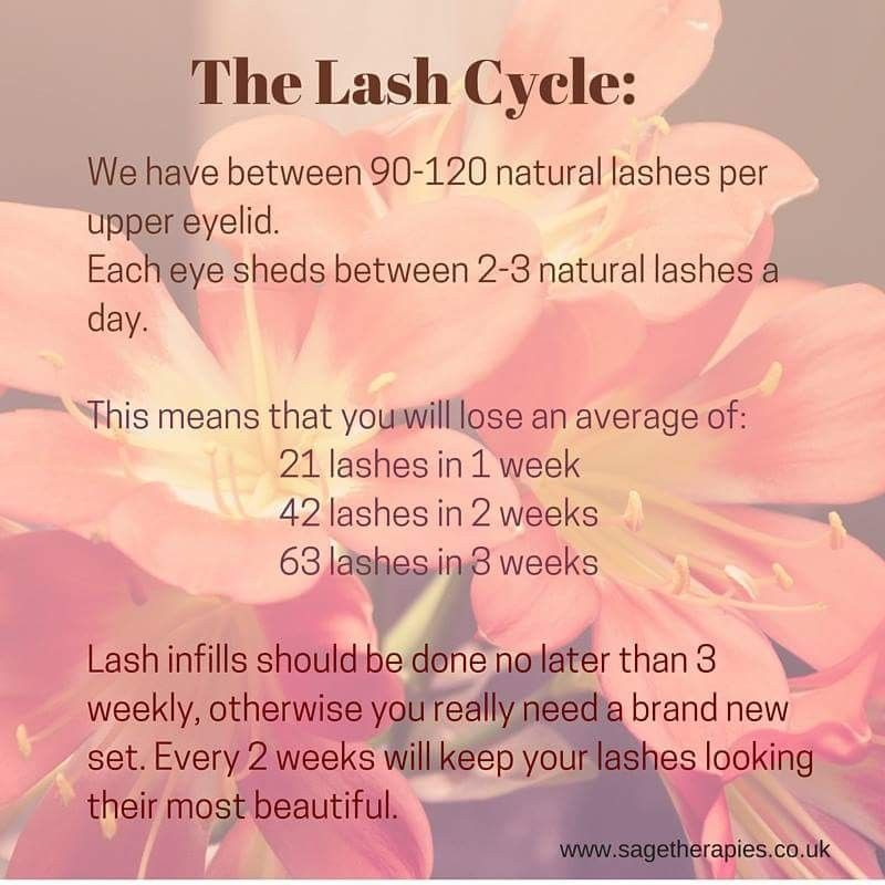 Photo of The lash cycle. www.sagetherapies… #lashcycle #eyelashextensions #lashes #beau…