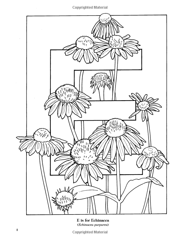 Garden Flowers Alphabet Coloring Book Ruth Soffer Coloring Books For Adults 9780486435954 Boo Designs Coloring Books Flower Alphabet Mandala Coloring Books