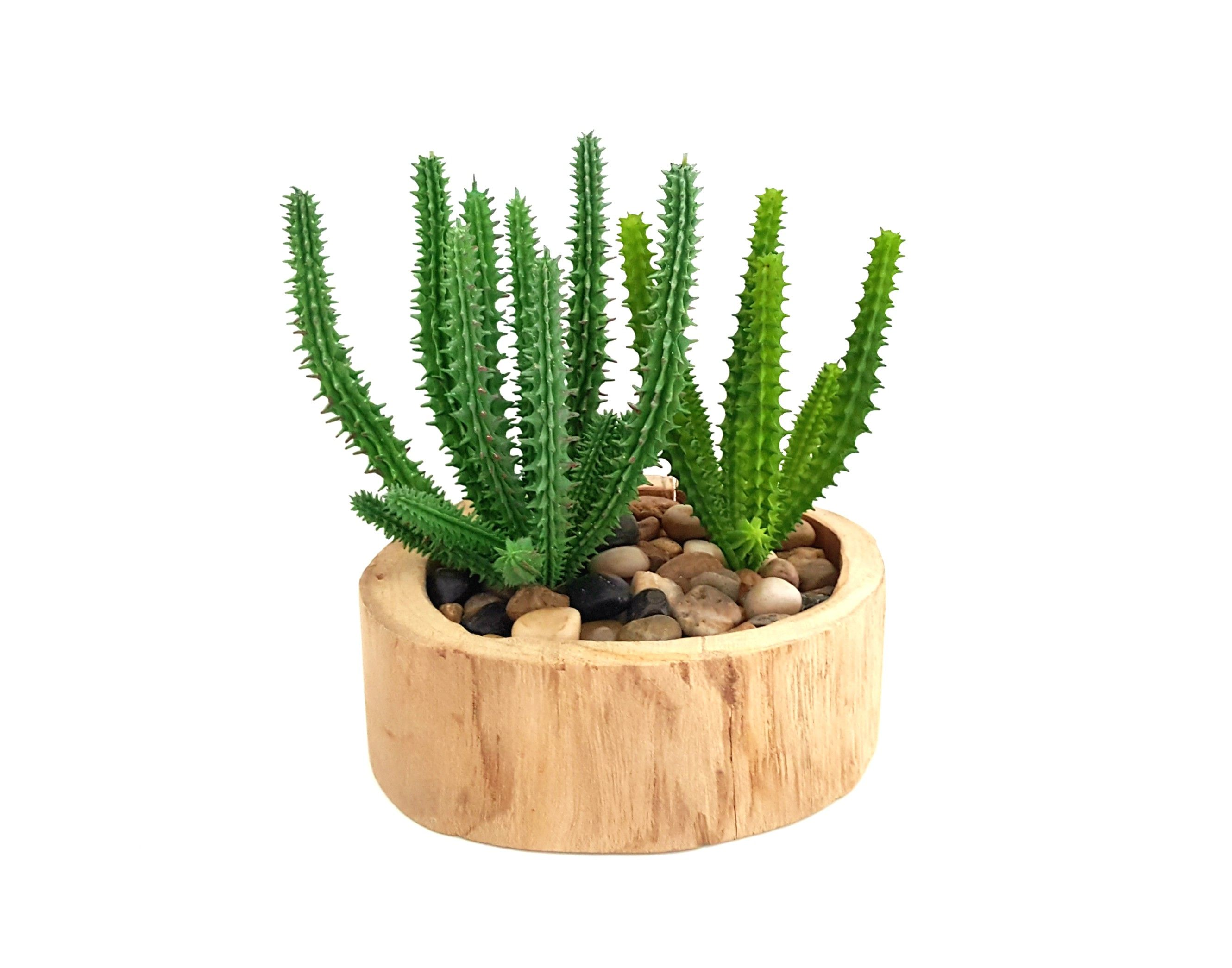 Diy faux succulent kit in carved wood planter includes