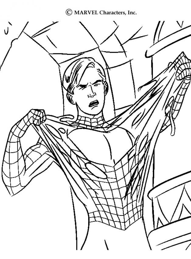 Spiderman 3 Dibujos Para Colorear | Spiderman, Spiderman dibujo y ...