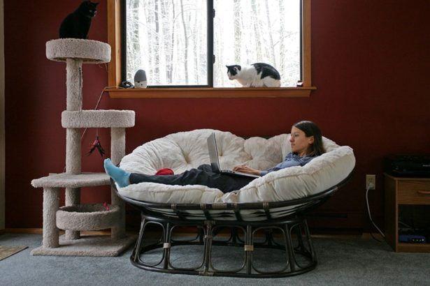 Living Room:Papasan Couch Chair Review Papasan Sofa Chair