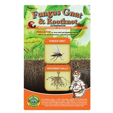 10 Million Live Beneficial Nematodes Sf Fungus Gnat Rootknot Gall Exterminator By Bug Sales 16 99 Kills O Slugs In Garden Garden Pests Garden Pest Control