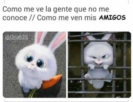 Photo of Recopilación de memes graciosos.