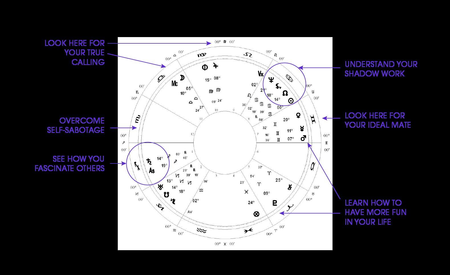 Astrology Hub Charts