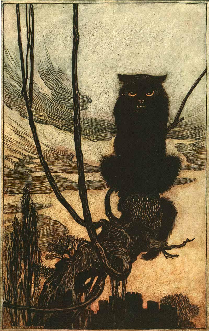 Black Cat woodcut illustration, Artist unknown.