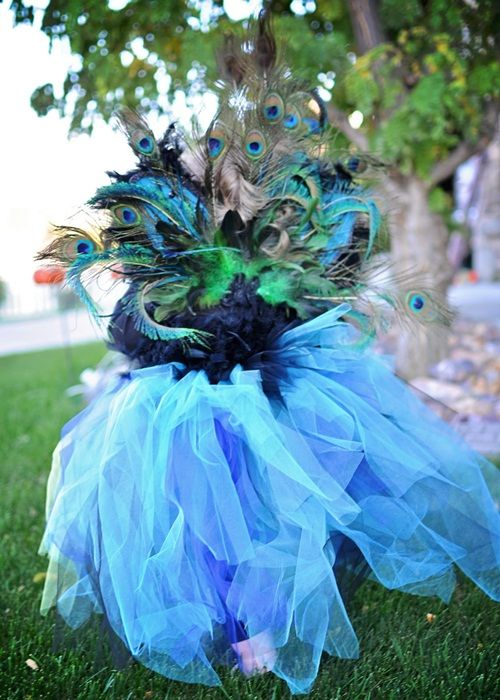 Espectacular disfraz casero de boas y tules