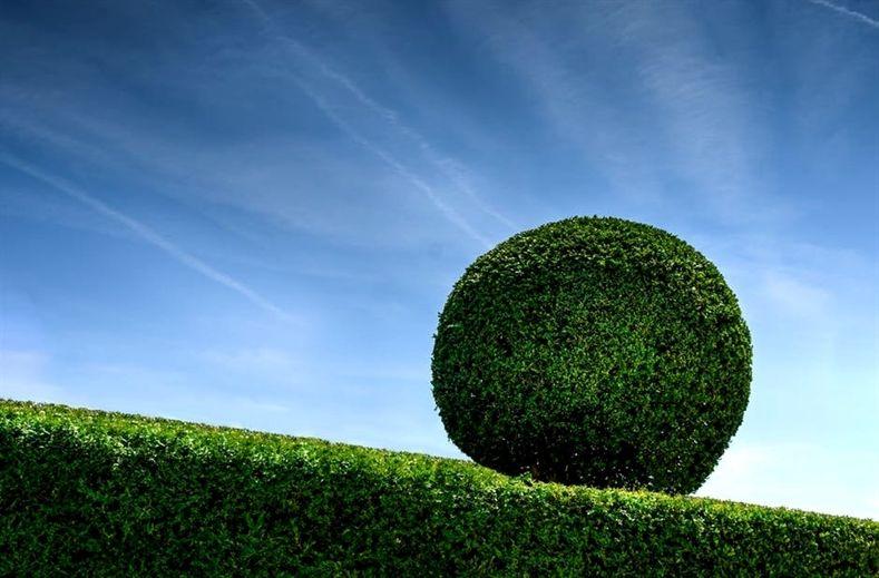 c1ce74d2cd57b72b7c71084e0263e835 - Simple Essay On My Hobby Gardening