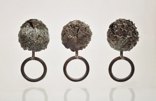 Heidemarie Herb  Rings: Collerction herb's garden 2012  Organic fragment, resin, ag