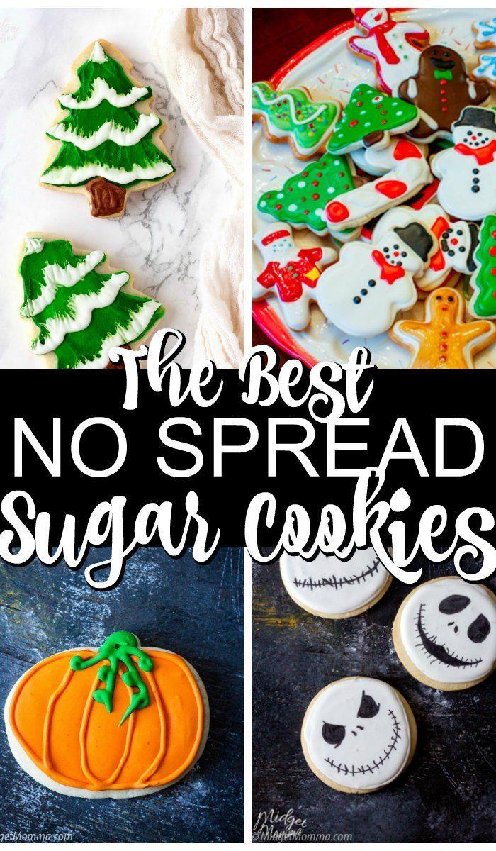 Perfect sugar cookie recipe
