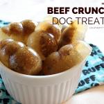 Beef Crunch Dog Treat Recipe