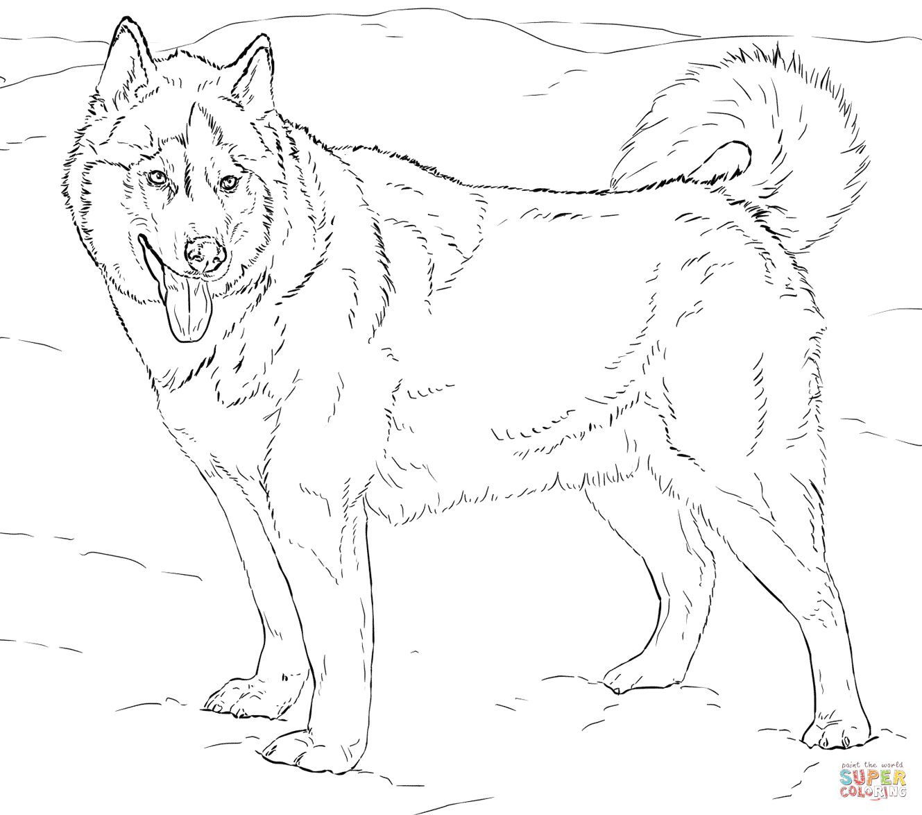 difficult husky coloring page - Google Search | road trip | Pinterest