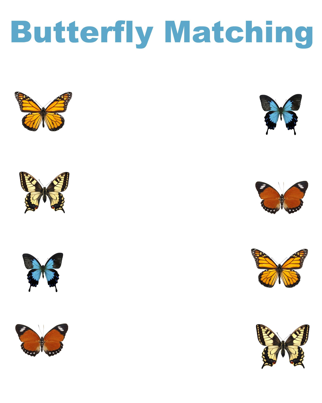 Free Printable Matching Worksheets Dr Suess Stars Butterflies Butterfly Worksheets Butterfly Worksheet Butterfly Worksheets Preschool Free printable butterfly worksheets