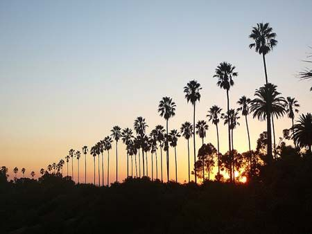 Top Ten Los Angeles Hiking Trails Hikes In Los Angeles Free Things To Do Los Angeles Hiking Trails