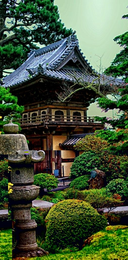 Beautiful Japanese Tea Garden Beautiful places, Tea garden