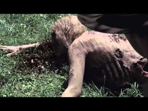Efectos Especiales The Walking Dead - YouTube