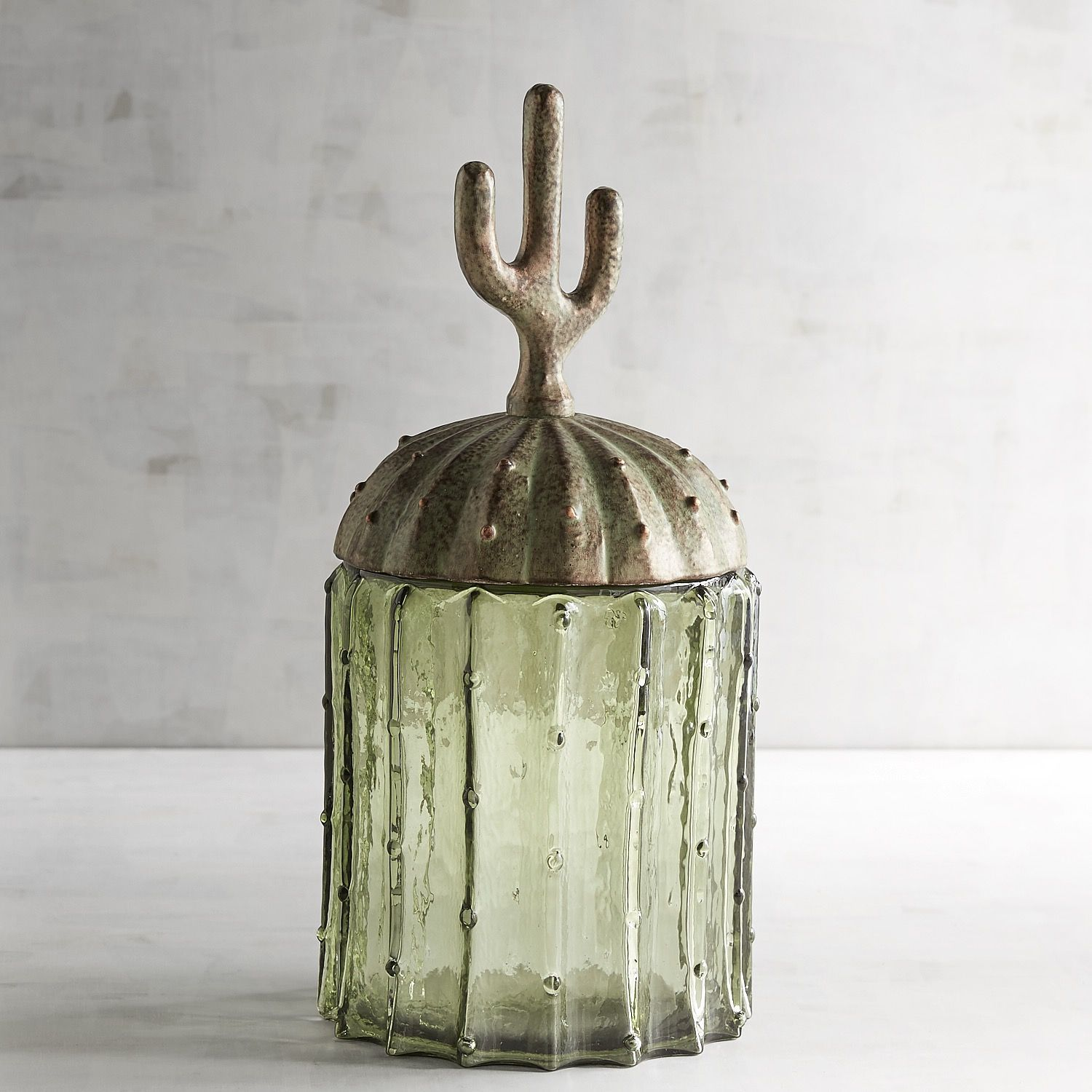 Cactus Canister Green Products Home Decor Cactus