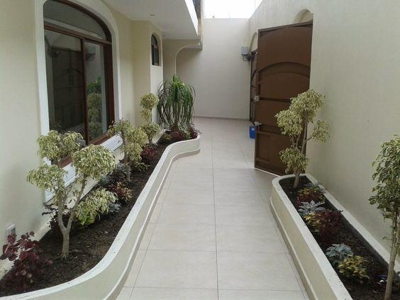 Como decorar pasillos exteriores fachadas jardins for Como decorar jardines exteriores pequenos