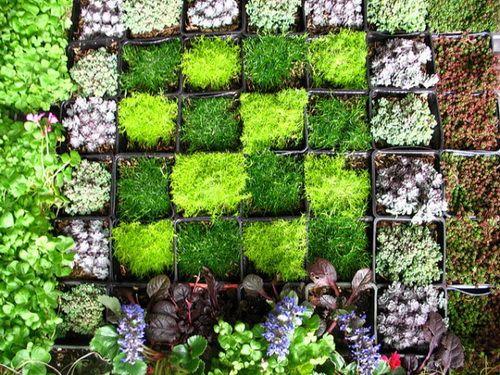 Vertical Wall Garden Ideas | Garden Art | Pinterest | Walled garden ...