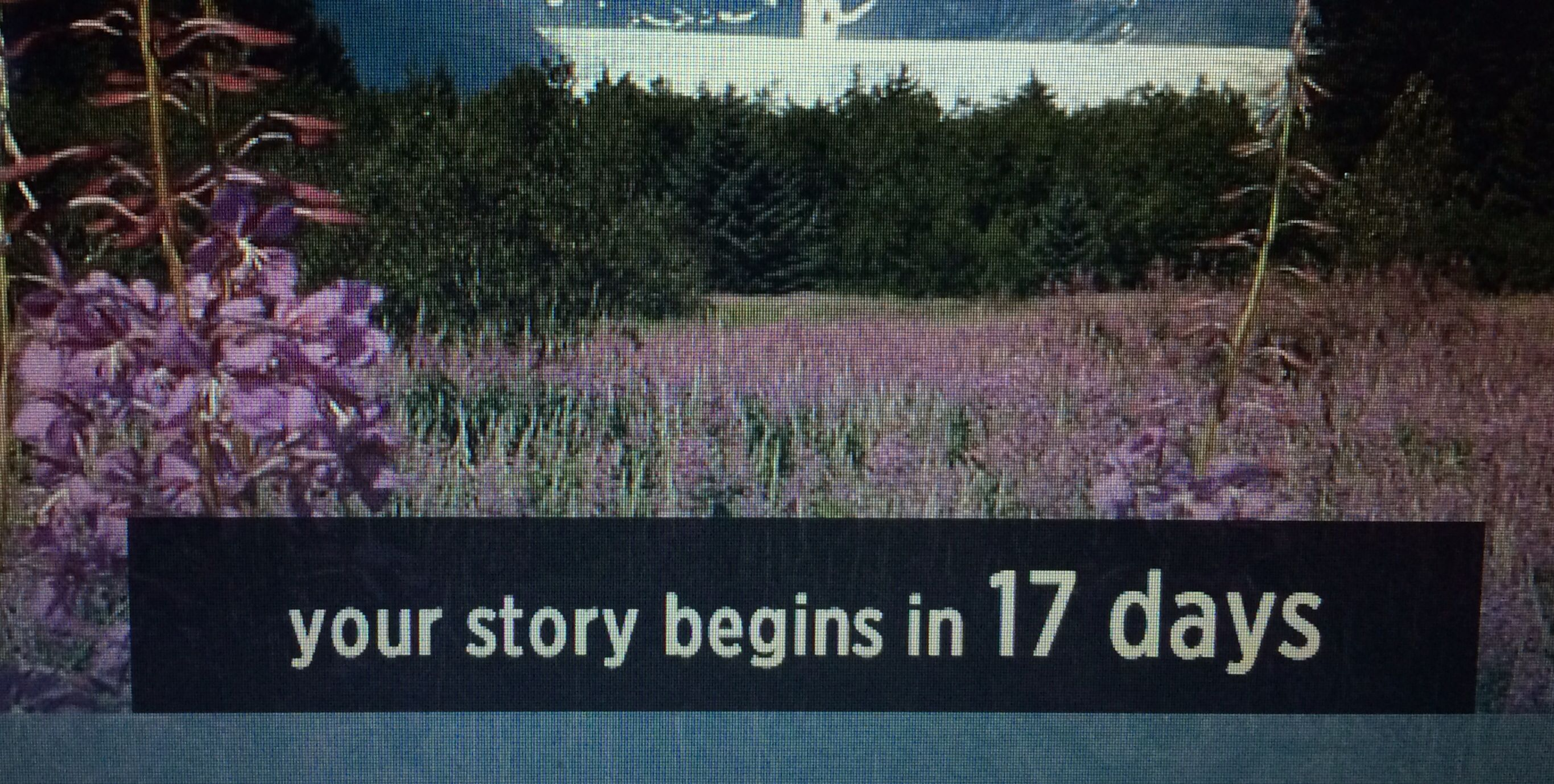 Our Story Begins In 17 Days!!!