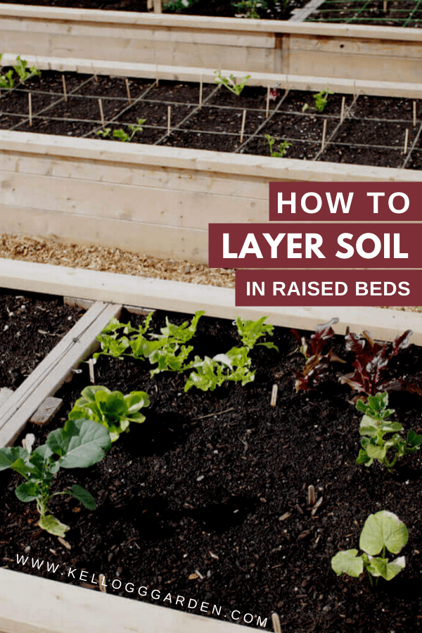 Layering Soil for an Inexpensive Raised Garden Bed in 2020