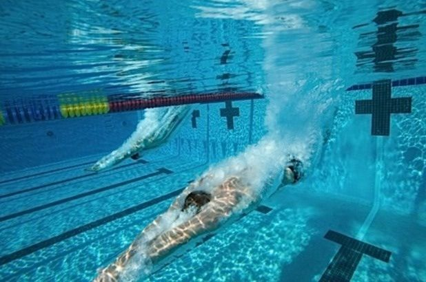 Love This Shot Swim Life Swimmers Life Swimming Photos