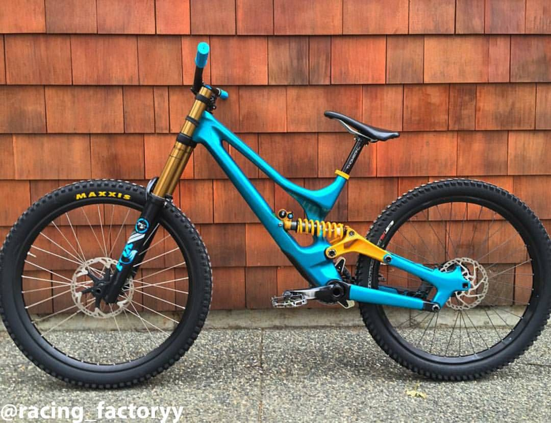 Custom painted Specialized Demo S-Works 2015