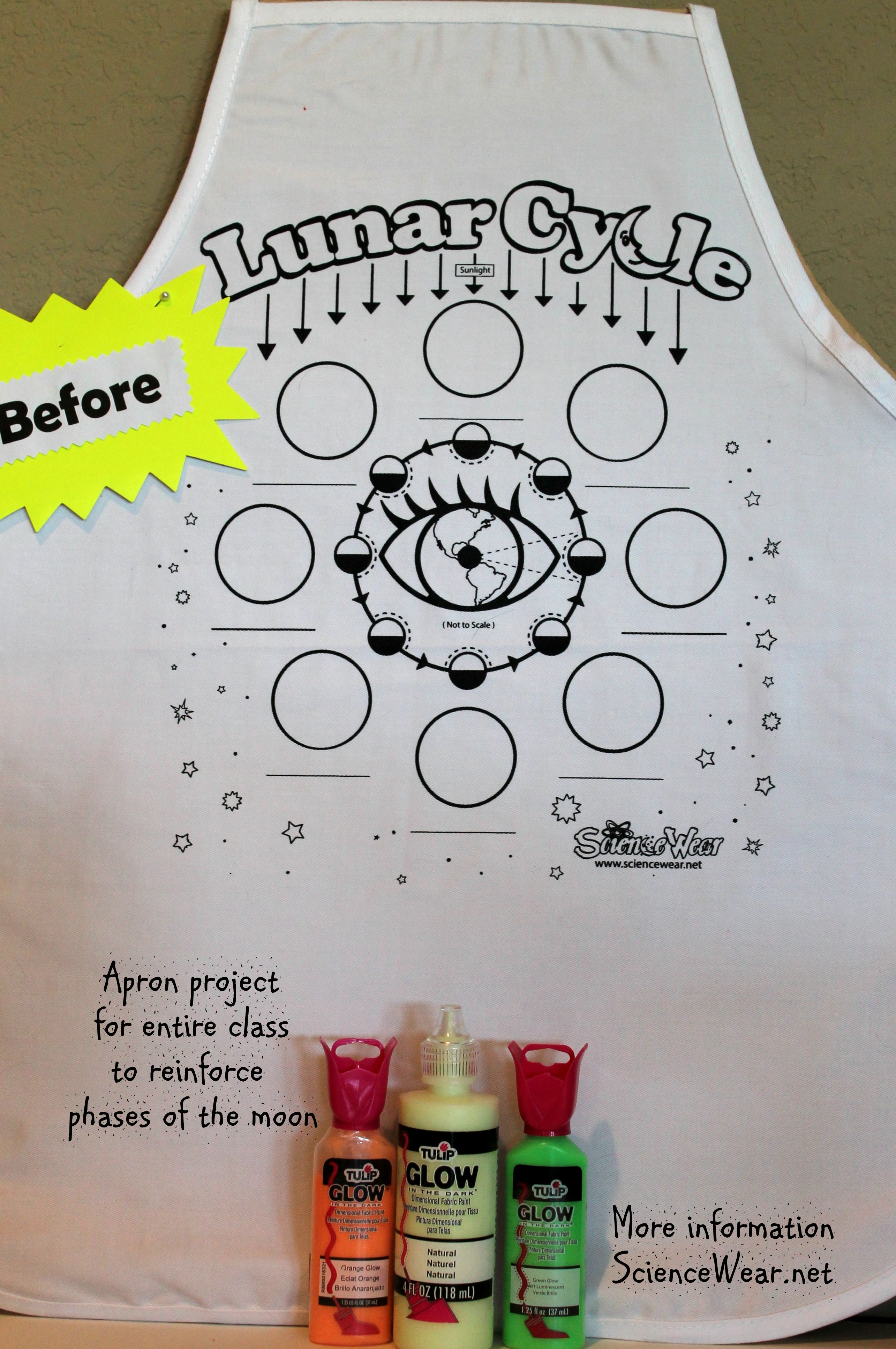 Make your own Lunar Cycle apron classroom project! Aprons are only $6 (bulk minimum of 12) and one size fits most.  Done with fabric markers and glow-in-the-dark paint for the phases.  instructions, project guidelines, student plan sheet and letter to parent to assist in collecting money for apron, can be found at http://sciencewear.net/lunar-cycle.html Everyone loves this project and it really helps students understand the phases!