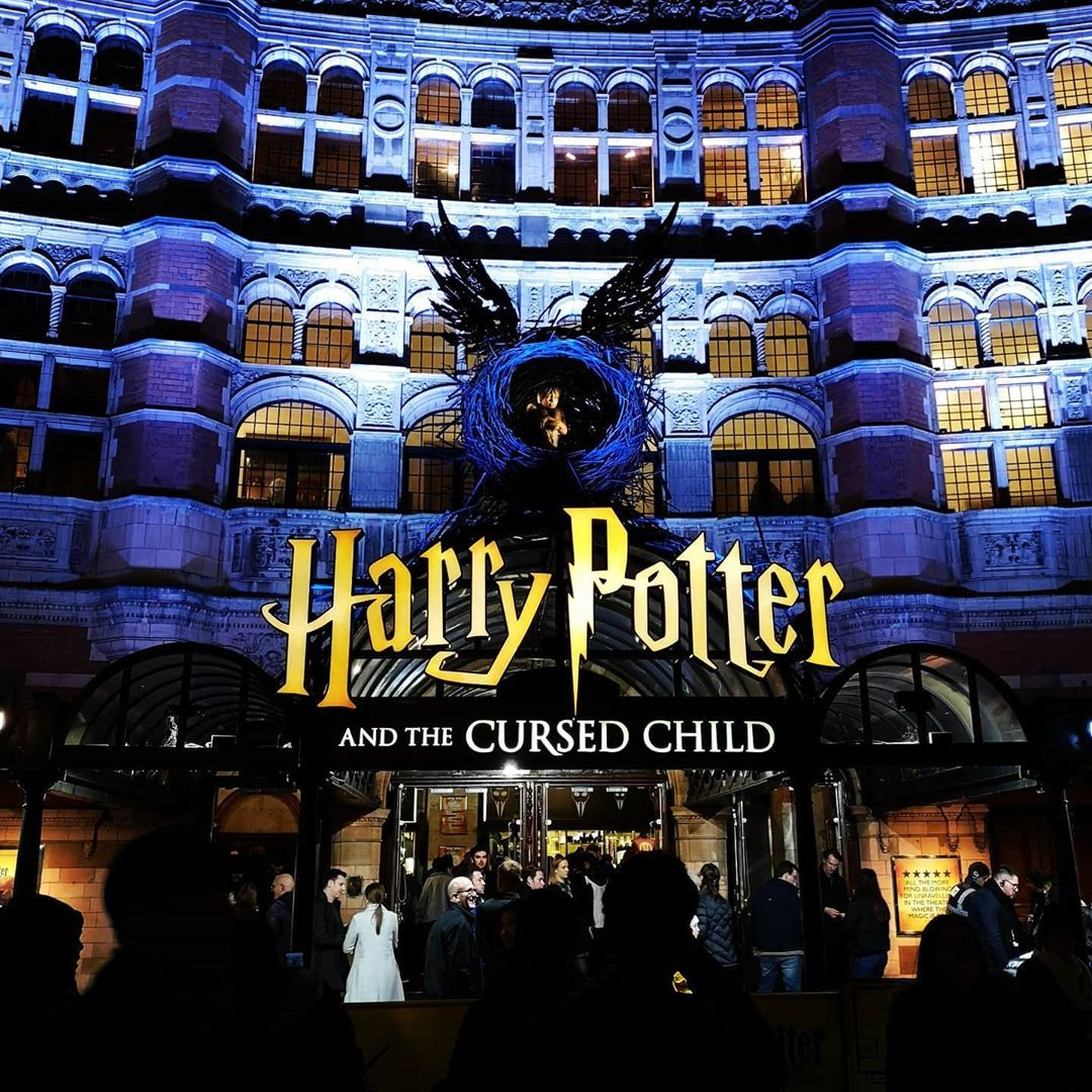 Harry Potter And The Cursed Child Cursed Child Harry Potter Children