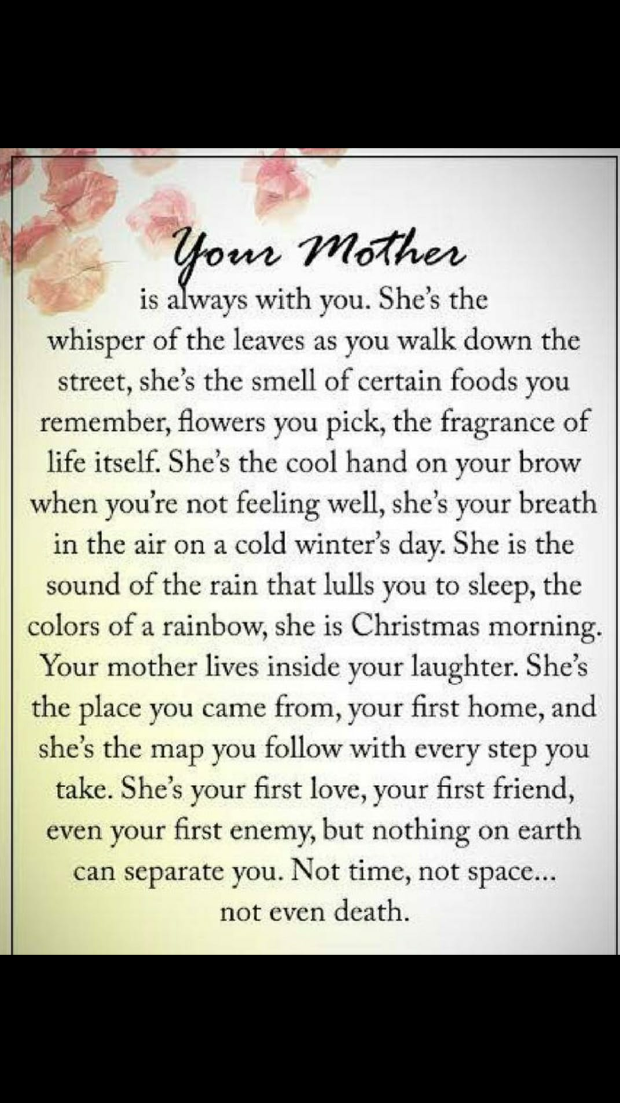 Absolutely Perfect description of my Mother She was and always will